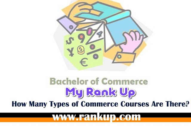 How Many Types of Commerce Courses Are There?