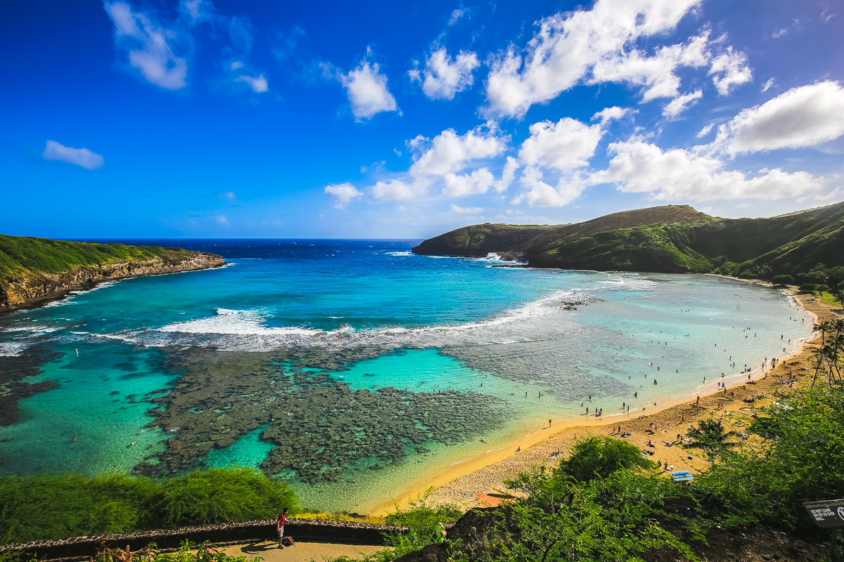 paradise in hanauma bay hawaii