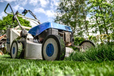 why is lawn care important
