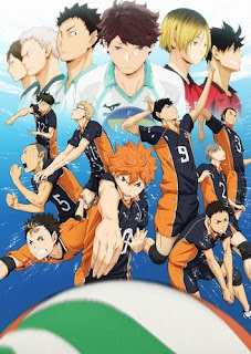 Haikyu! 25/25 (Audio Castellano) MEGA
