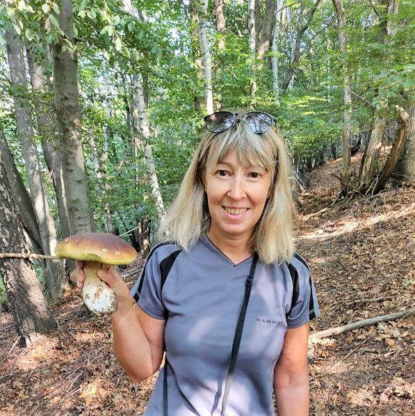 fungo porcino raccolto nel bosco