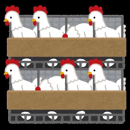養鶏場のイラスト