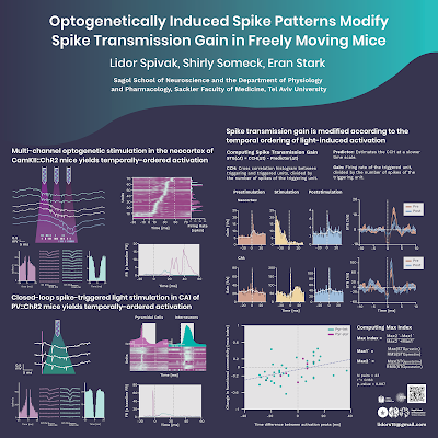"Poster titled, ""Optogenetically induced spike patterns modify spike transmission gain in freely moving mice"""