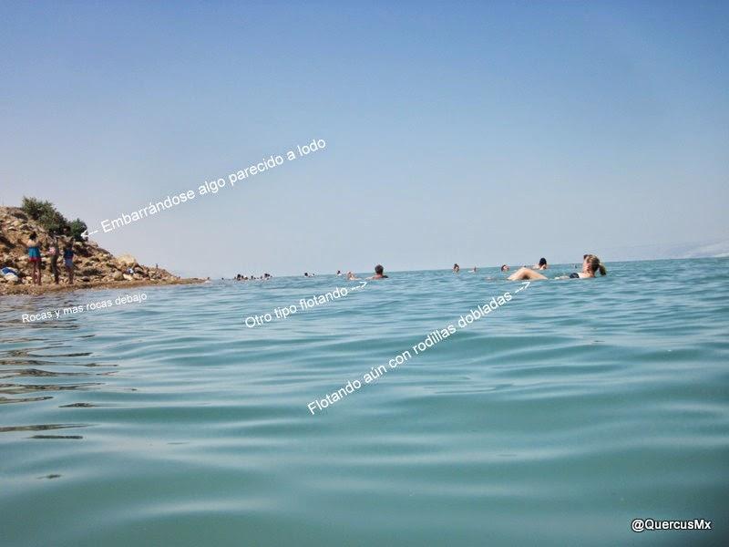 Explicación gráfica de como la densidad del agua en el Mar Muerto te hace flotar con facilidad