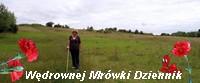 https://pogadajmyopeerelu.wordpress.com/2019/05/28/na-ratunek-wawelskiemu-smoku/