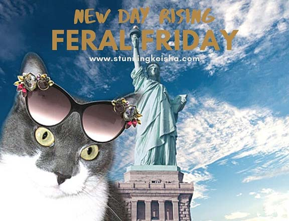 Feral Friday—New Day Rising