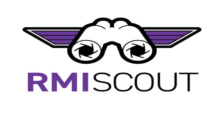 RMIScout : Bruteforce Attacks Against Exposed Java RMI Interfaces