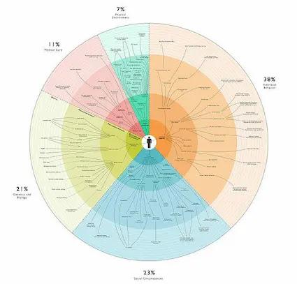 Social Determinants of Health-Edumediawellness
