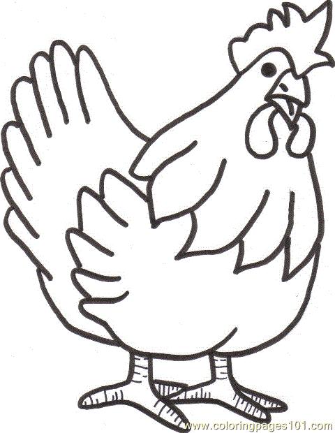 Gambar Mewarnai Hewan Ayam Anak Paud Tk