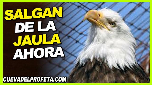 Salgan de la jaula ahora - William Marrion Branham en Español