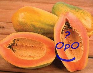 Opo - Manfaat buah pepaya untuk kesehatan