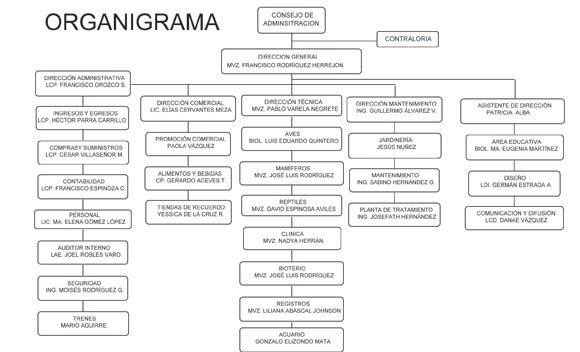 ZOOLÓGICO GUADALAJARA: Organigrama