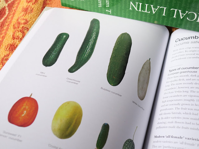 Page of cucumbers in 'The Salad Garden' by Joy Larkcom'.