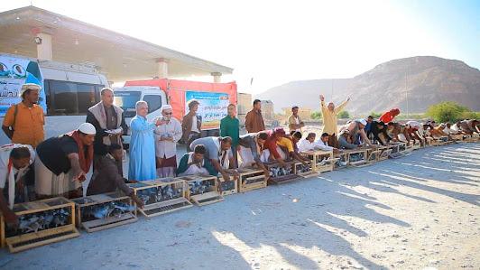 أنطلاق سباق الحمام الزاجل للمرحلة الاولى للعام 2020 _ 2021 بمسافة 420 كيلو جو من مديرية شحن محافظة المهرة