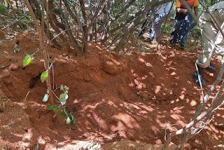 Corpo de mulher é encontrado enterrado em região de mata no Sertão da Paraíba