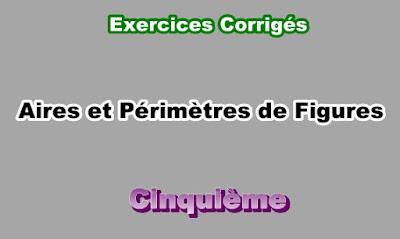 Exercices Corrigés d'Aires et Périmètres de Figure 5eme PDF