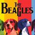 Perros cantan como los Beatles