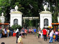 Kebun Raya Bogor Jawa Barat , Wisata Edukatif Yang Kaya Akan Spot Menarik