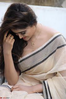 Sony Charishta in Brown saree Cute Beauty   IMG 3602 1600x1067.JPG