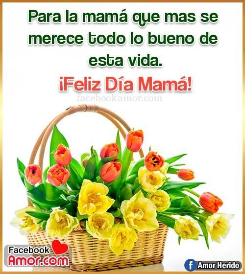 tulipanes para mamá