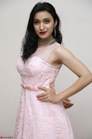 Sakshi Kakkar in beautiful light pink gown at Idem Deyyam music launch ~ Celebrities Exclusive Galleries 030.JPG