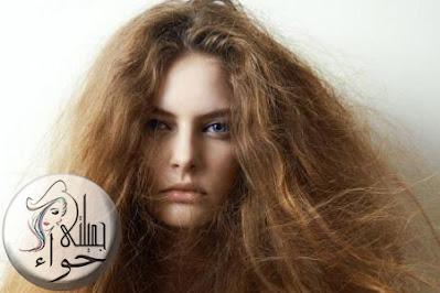 علاج الشعر المتقصف والهايش