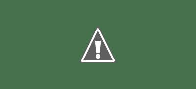 নির্বাচনের আগে যুক্তরাষ্ট্রে বর্ণবাদবিরোধী আন্দোলন তীব্রতর হচ্ছে  ।।  The anti-apartheid movement in the United States is intensifying before the election