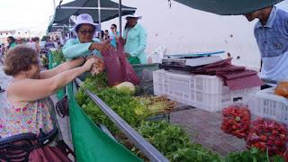 Sucesso: Feira Agroecológica abraçada pela população em Picuí