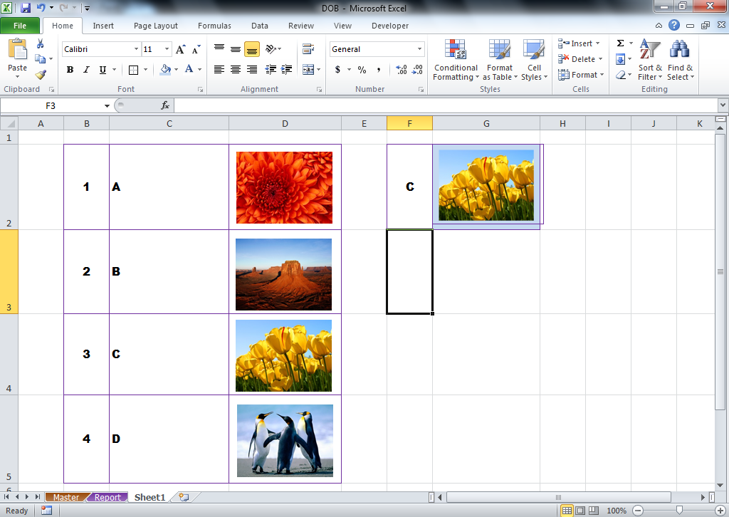 Picture Lookup Excel Function for Show Photo From Excel Database using Index and Match Formula according Code or Name