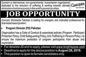 Jobs Opportunities as Program Director