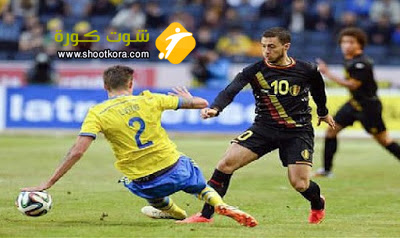 صراع كبير على الامل المتبقى للمنتخب السويدي والبلجيكي فى مباراة واحده فقط