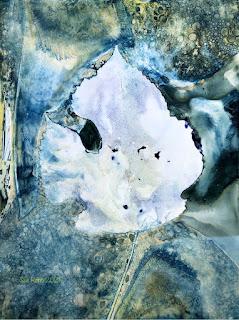 Wet cyanotype_Sue Reno_image 841