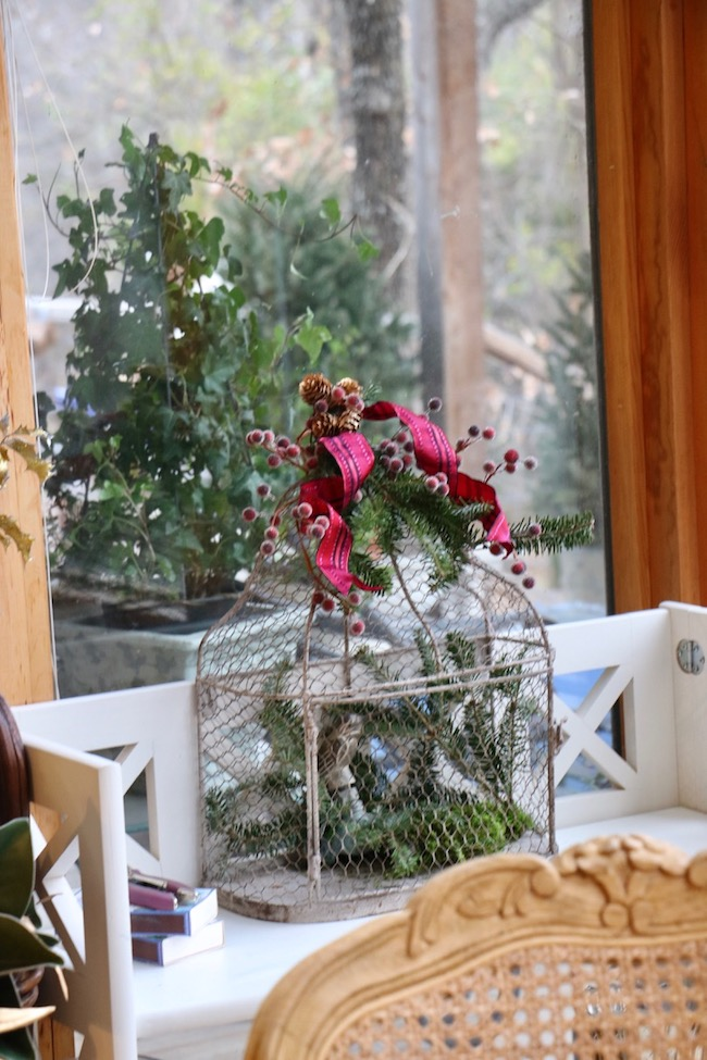 Christmas red plaid berry birdcage on breakfast sunspace book shelf looks outside to topiary ivy plant and fresh cut Christmas trees