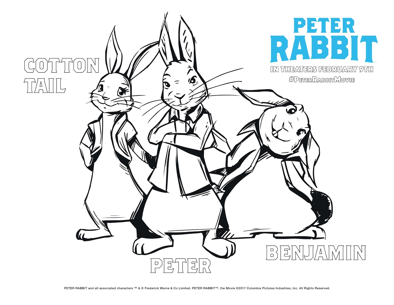 Rabbit Coloring Sheet 11262 cat color sheet coloring pages christmas ...