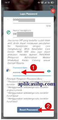 Buat Password Baru dan Klik Tombol Reset Password