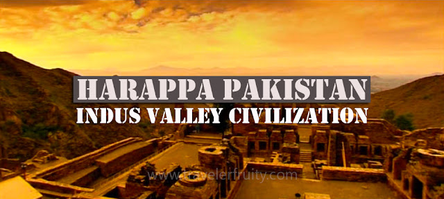 The Indus Valley Civilisation