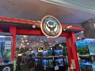 Keseruan Melihat Beragam Koleksi Ikan Louhan di Lomba Liga Indonesia 1 di Tangcity Mall Tangerang - Kaum Rebahan ID