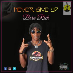 Mp3: Born Rich – Never Give Up (Mixed By Brizkid Beatz)