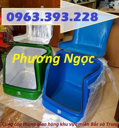Thùng giao hàng loại nhỏ, thùng chở linh kiện, thùng giao đồ ăn sau xe máy TGHN5