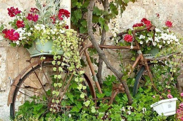 recup vélo jardin