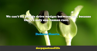 We can't let people drive wedges between us... because there's only one human race. Dolores Huerta