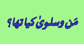 qurani-waqiat-in-urdu-man-o-salwa-ka-waqia