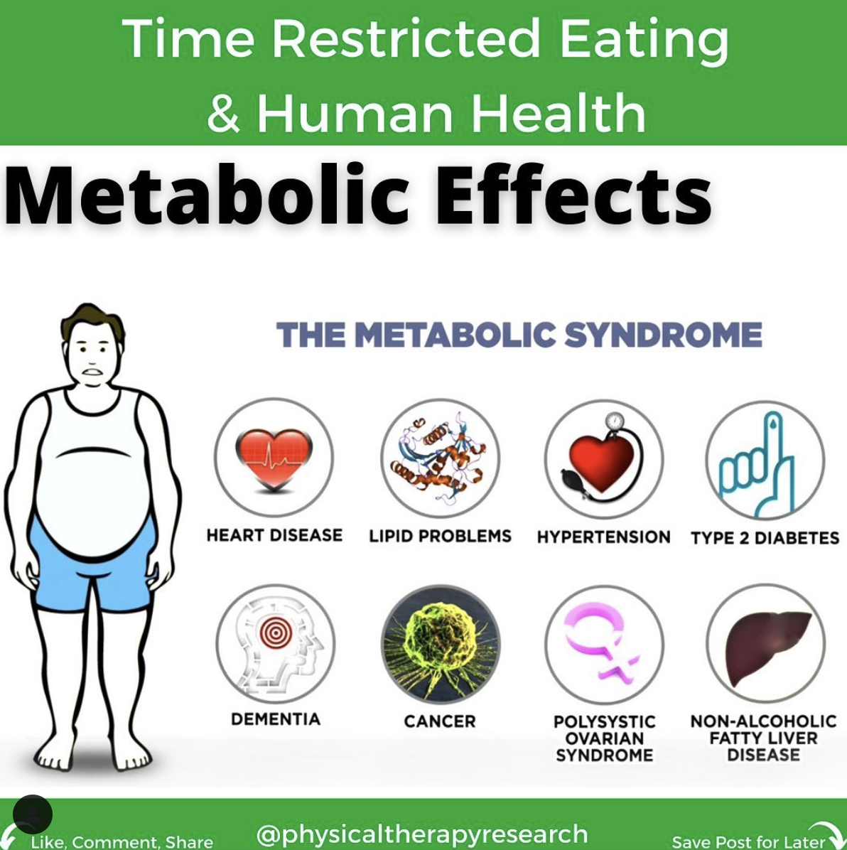 Time Restricted Eating on Human Health Part 4 - Metabolic Effects - themanualtherapist.com