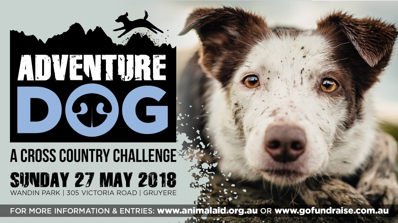 Adventure Dog - A Cross Country Challenge - May 27 ...