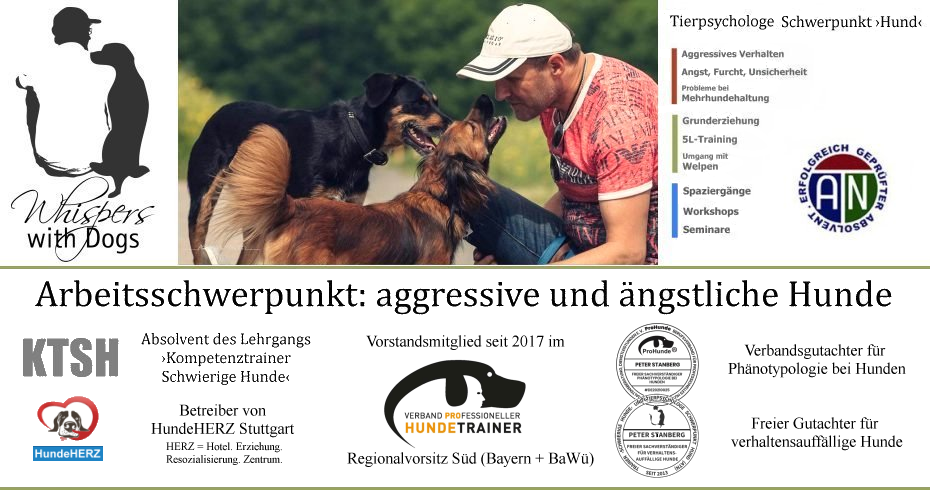 Trainer ›Schwierige Hunde‹ Stuttgart Süd | Hundeschule Whispers with Dogs