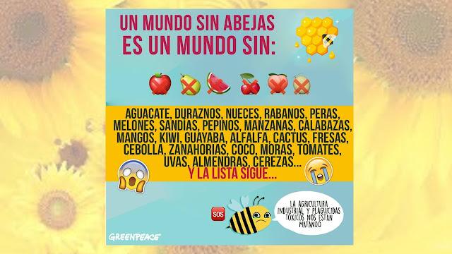 daño en abejas