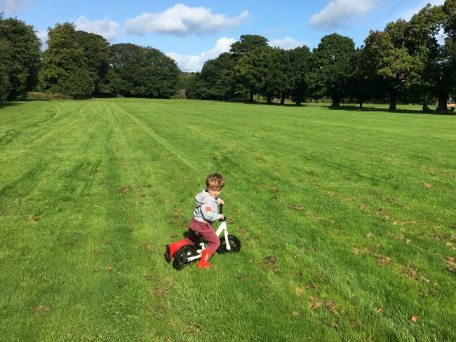 boy-riding-bike-on-the-grass-field-at-tredegar-country-park