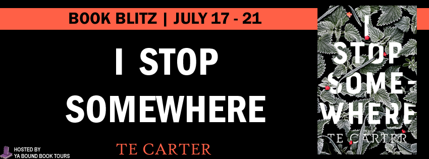 I Stop Somewhere Book Blitz