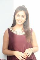 Nikki Galrani in a Brown Shining Sleeveless Gown at Nakshatram music launch ~  Exclusive 057.JPG