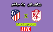 نتيجة مباراة اتلتيكو مدريد وغرناطة اليوم بتاريخ 27-09-2020 في الدوري الاسباني